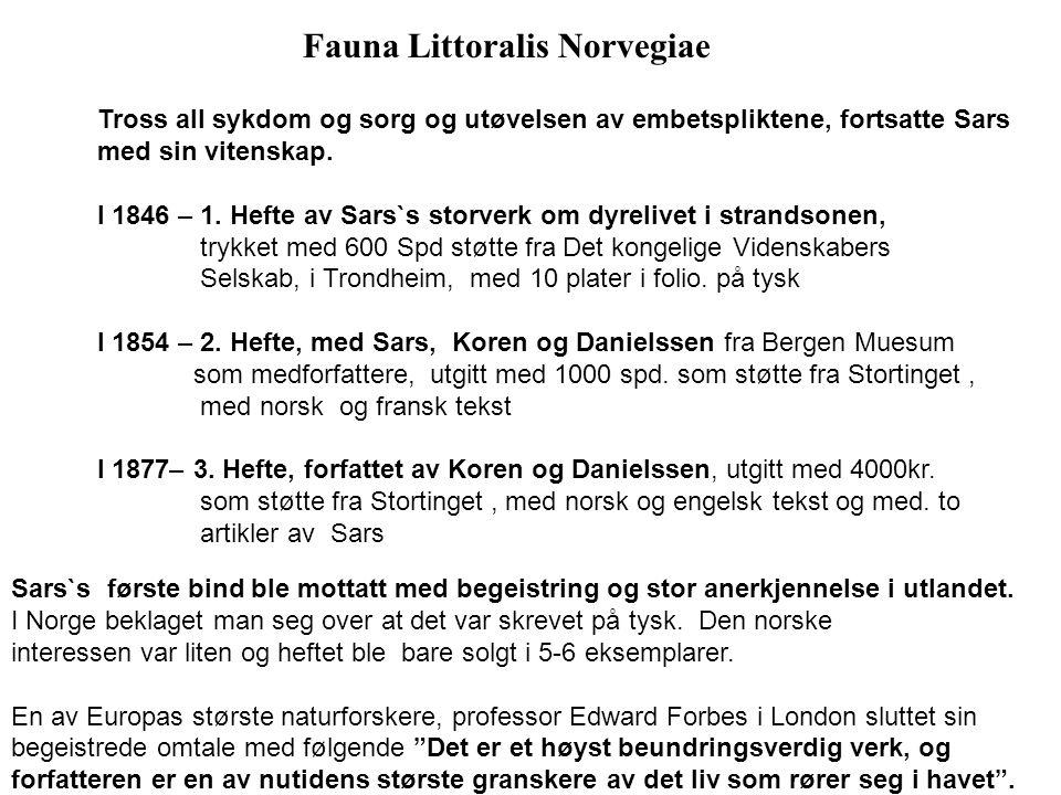 Fauna Littoralis Norvegiae