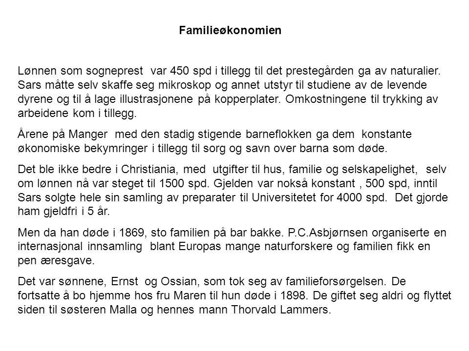 Familieøkonomien