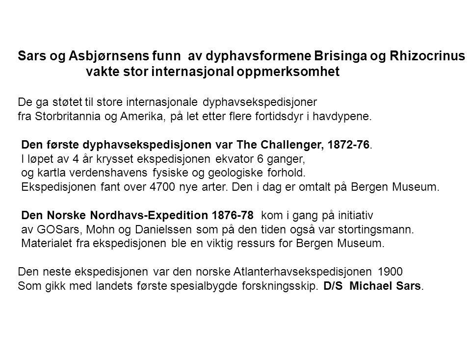 Sars og Asbjørnsens funn av dyphavsformene Brisinga og Rhizocrinus