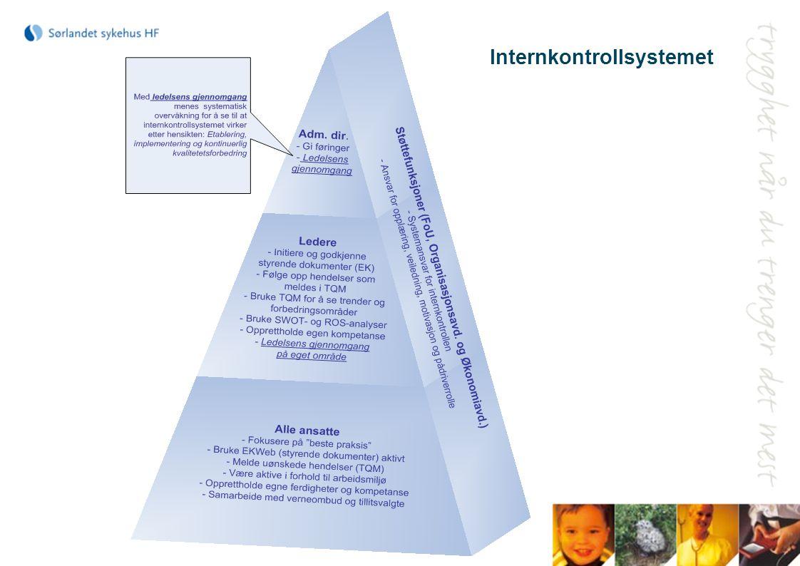 Internkontrollsystemet