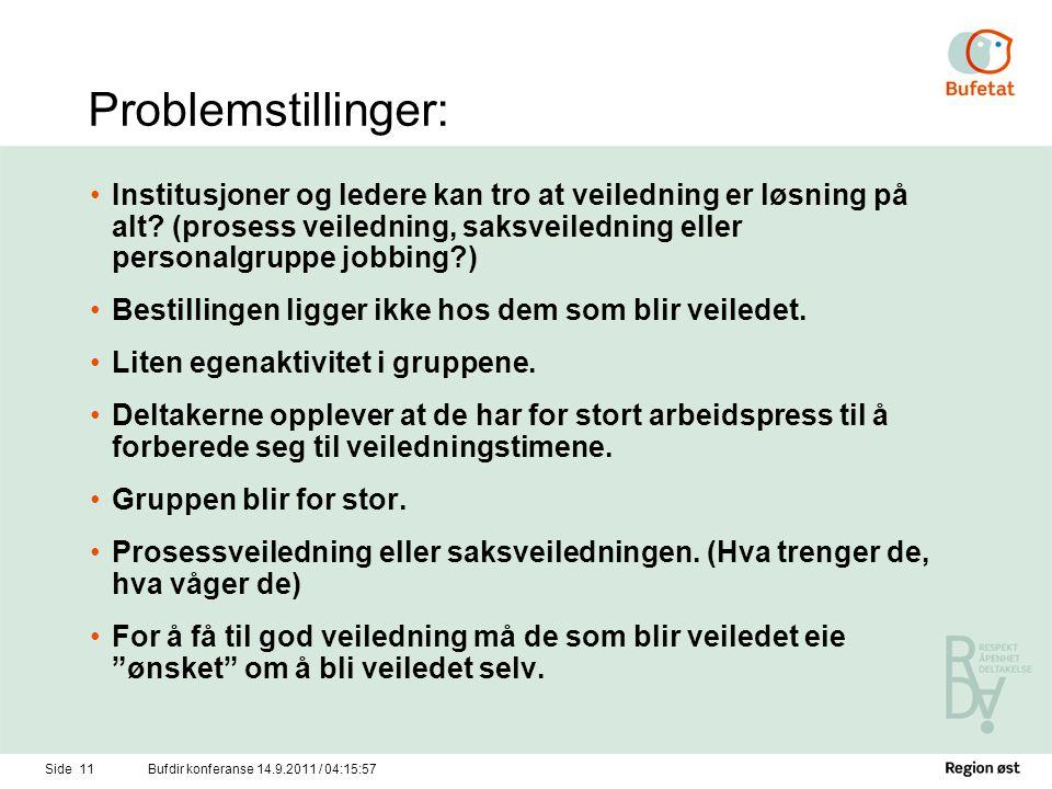Problemstillinger: