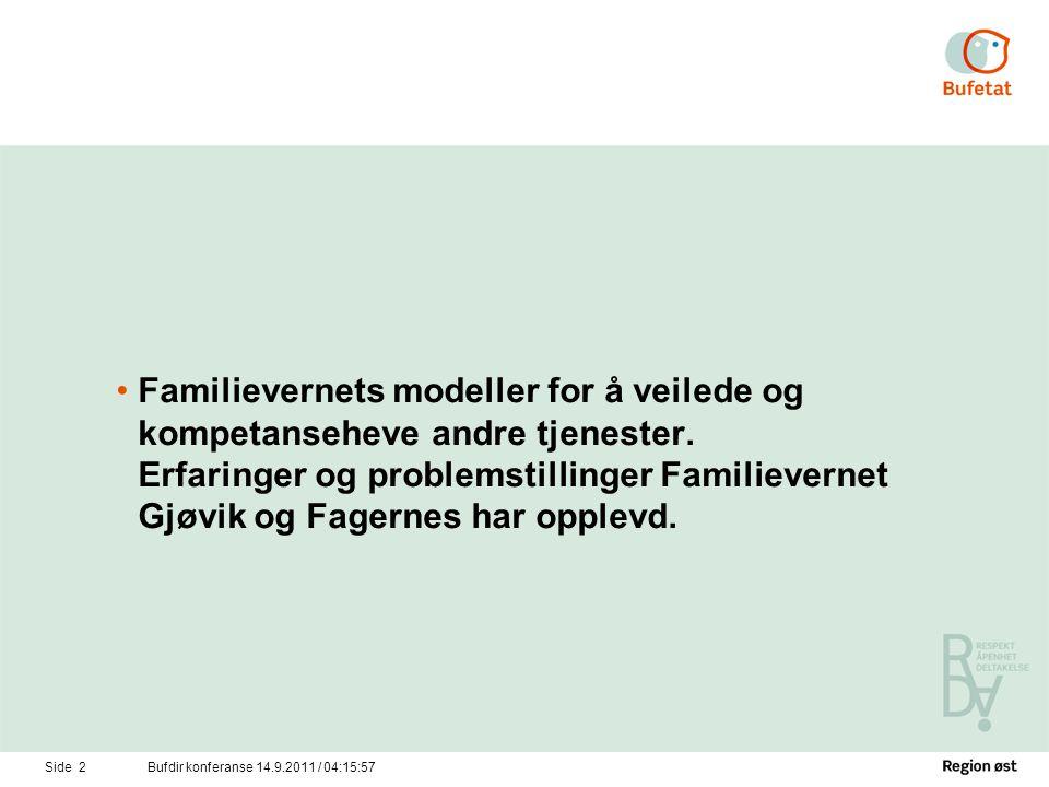 Familievernets modeller for å veilede og kompetanseheve andre tjenester. Erfaringer og problemstillinger Familievernet Gjøvik og Fagernes har opplevd.