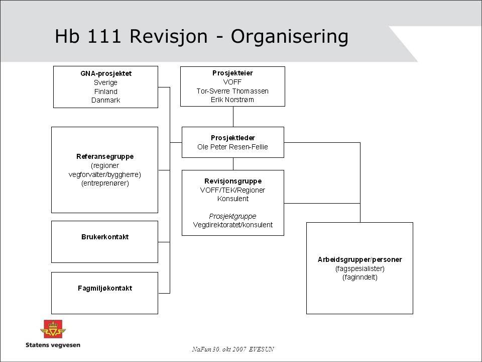 Hb 111 Revisjon - Organisering