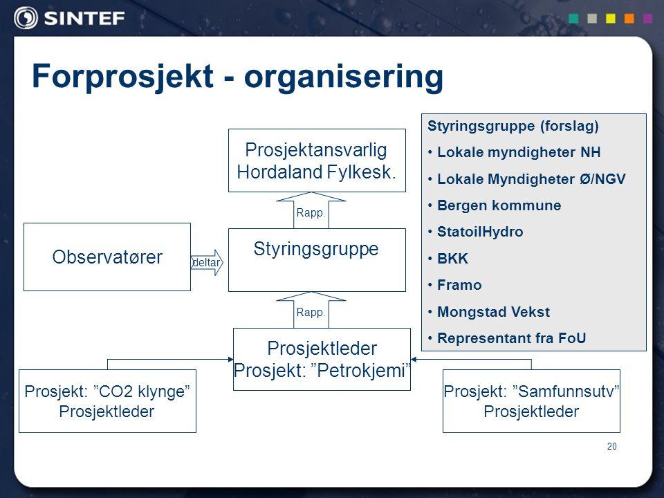 Forprosjekt - organisering