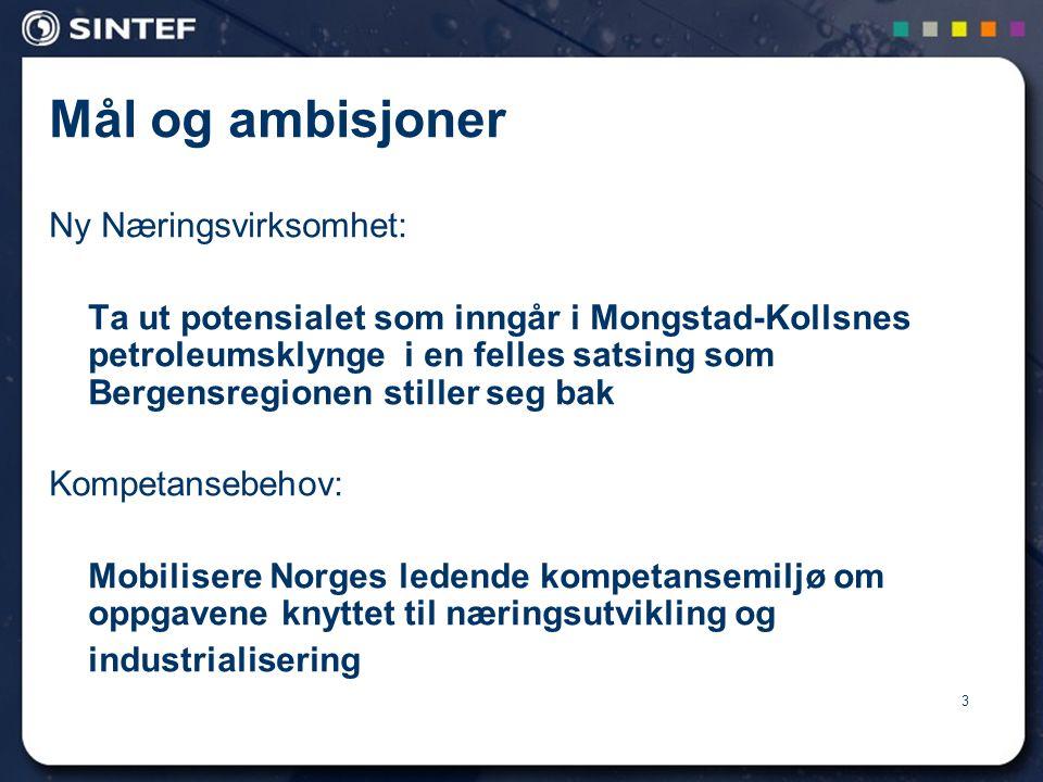 Mål og ambisjoner Ny Næringsvirksomhet: