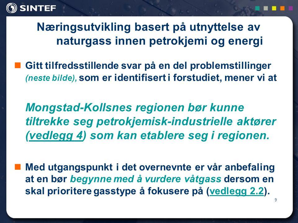 Næringsutvikling basert på utnyttelse av naturgass innen petrokjemi og energi