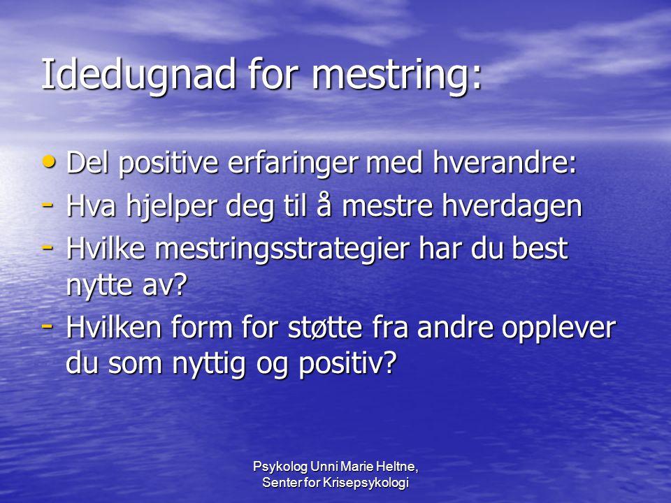 Idedugnad for mestring: