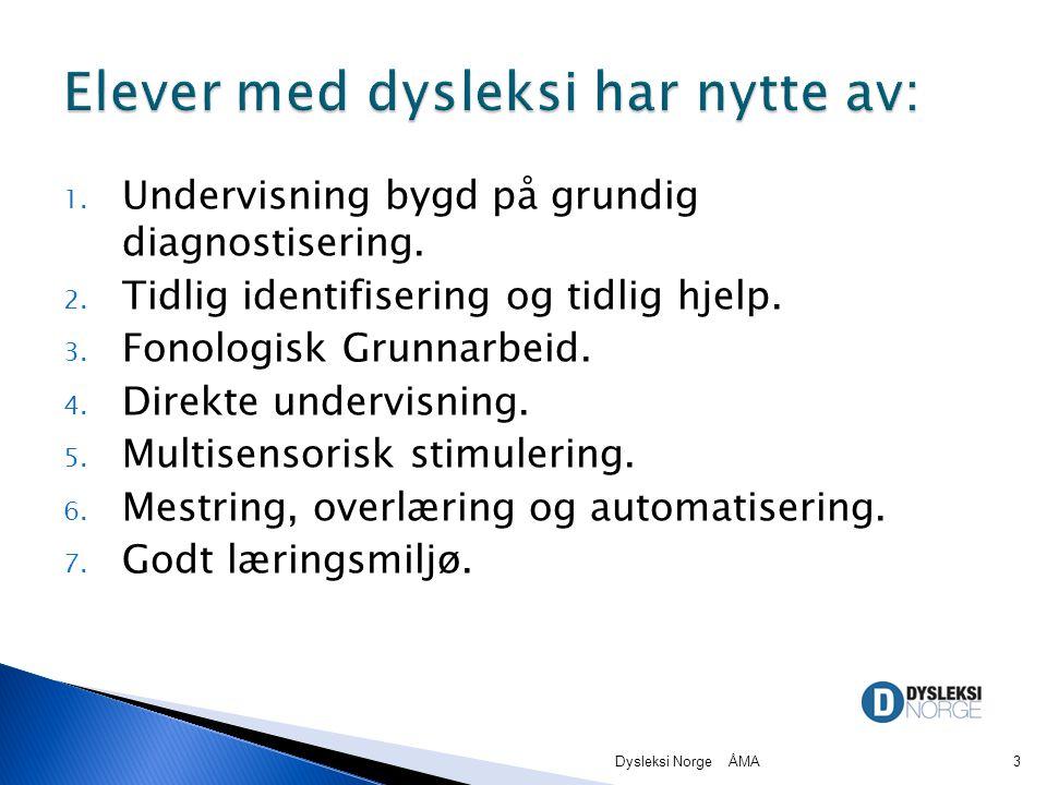 Elever med dysleksi har nytte av: