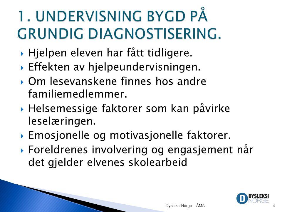 1. UNDERVISNING BYGD PÅ GRUNDIG DIAGNOSTISERING.
