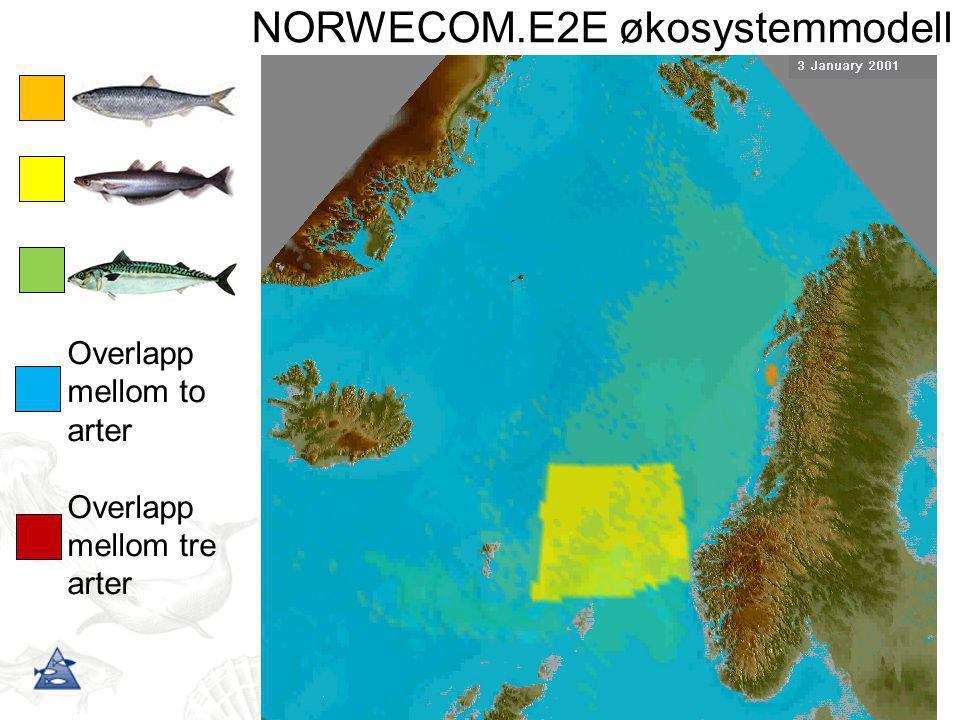 NORWECOM.E2E økosystemmodell