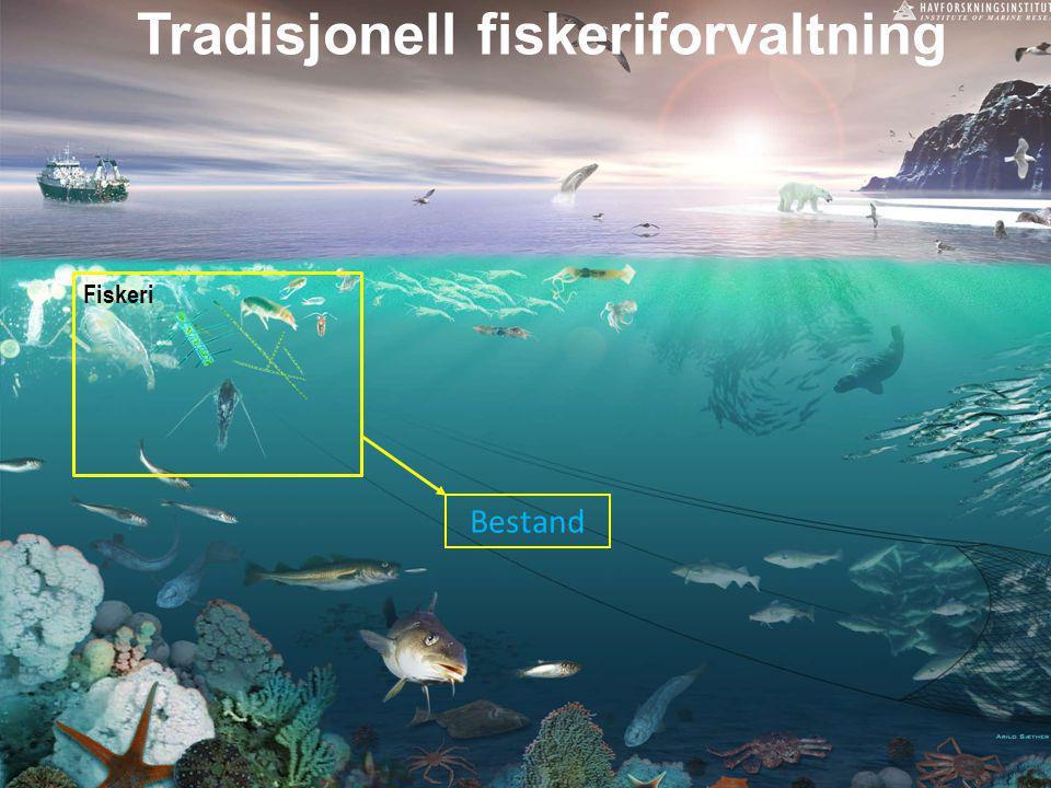 Tradisjonell fiskeriforvaltning