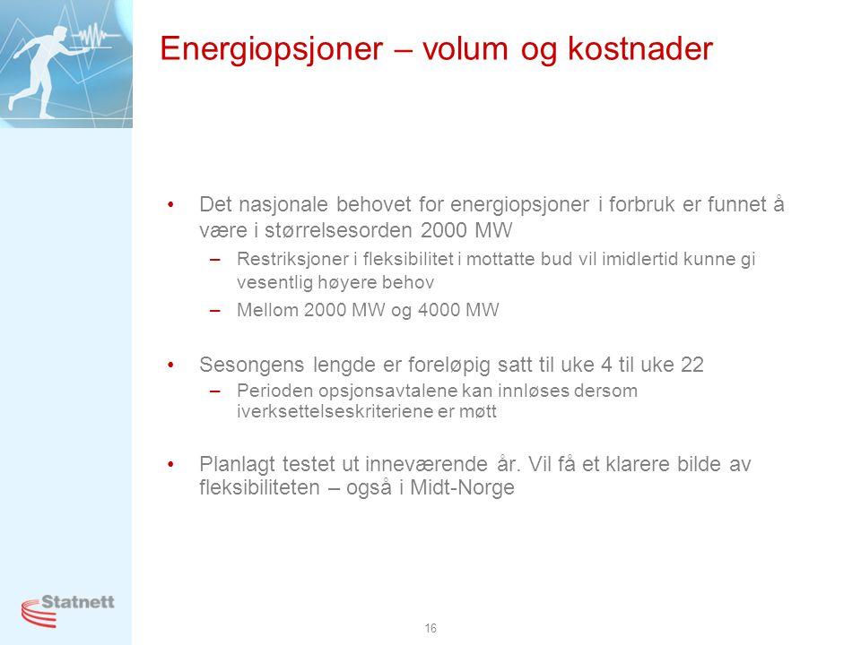 Energiopsjoner – volum og kostnader