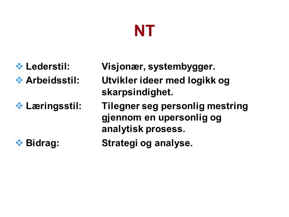 NT Lederstil: Visjonær, systembygger.