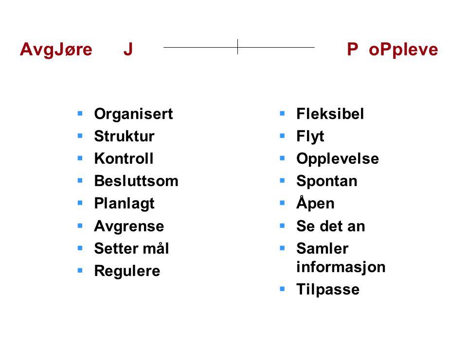 AvgJøre J P oPpleve Organisert Struktur Kontroll Besluttsom Planlagt