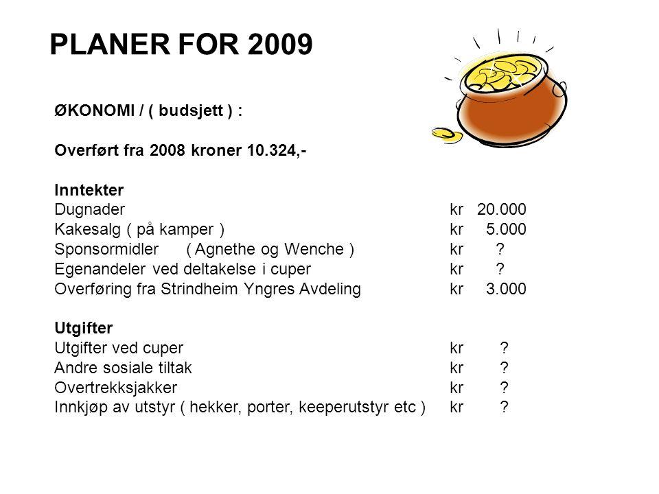 PLANER FOR 2009 ØKONOMI / ( budsjett ) :
