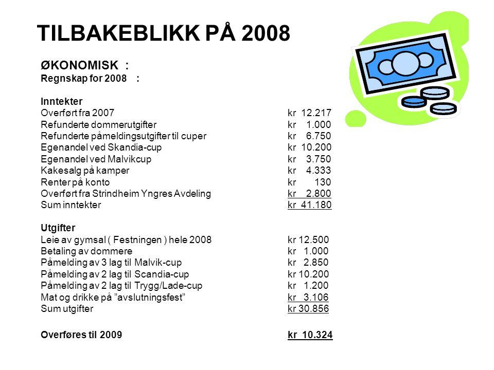 TILBAKEBLIKK PÅ 2008 ØKONOMISK : Regnskap for 2008 : Inntekter