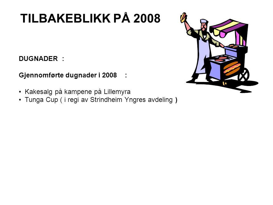 TILBAKEBLIKK PÅ 2008 DUGNADER : Gjennomførte dugnader i 2008 :