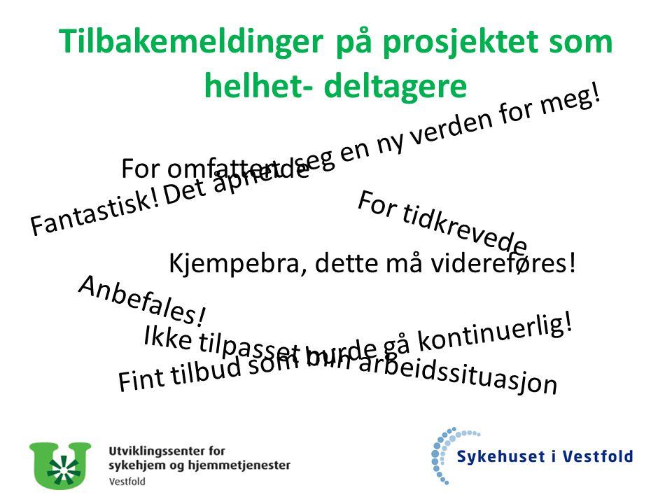 Tilbakemeldinger på prosjektet som helhet- deltagere