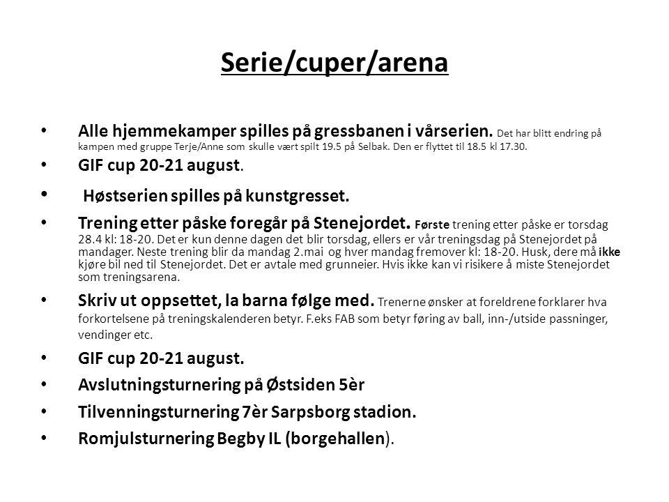 Serie/cuper/arena Høstserien spilles på kunstgresset.