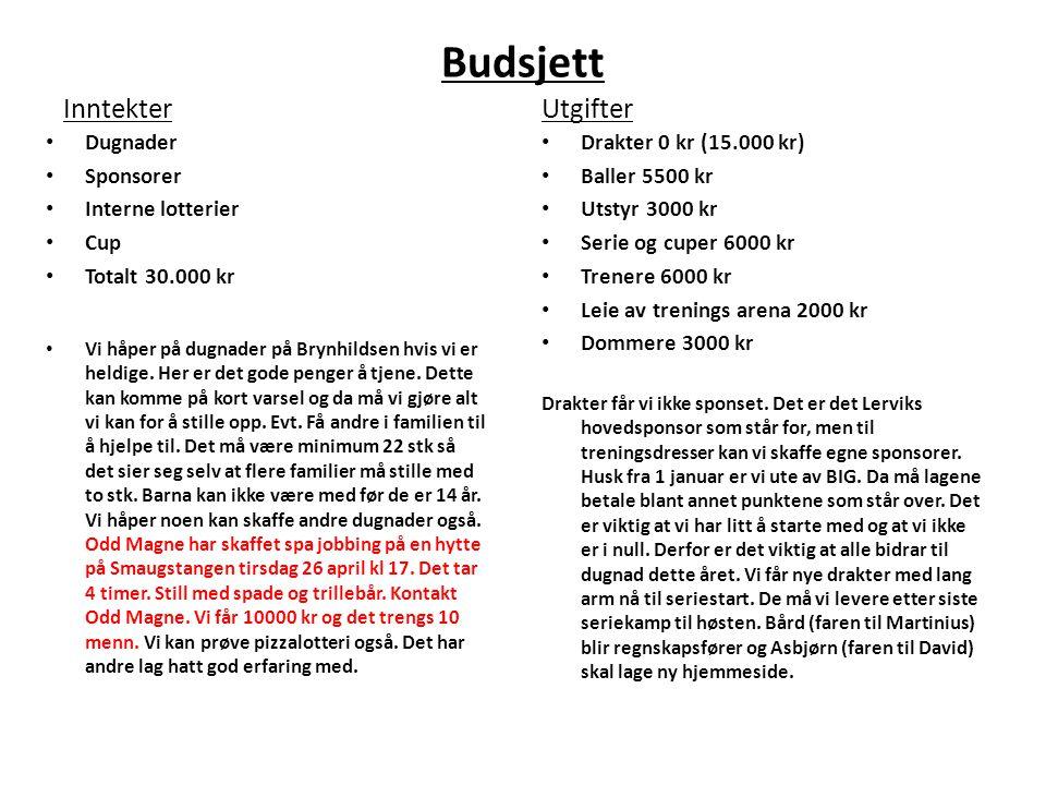 Budsjett Utgifter Inntekter Dugnader Sponsorer Interne lotterier Cup