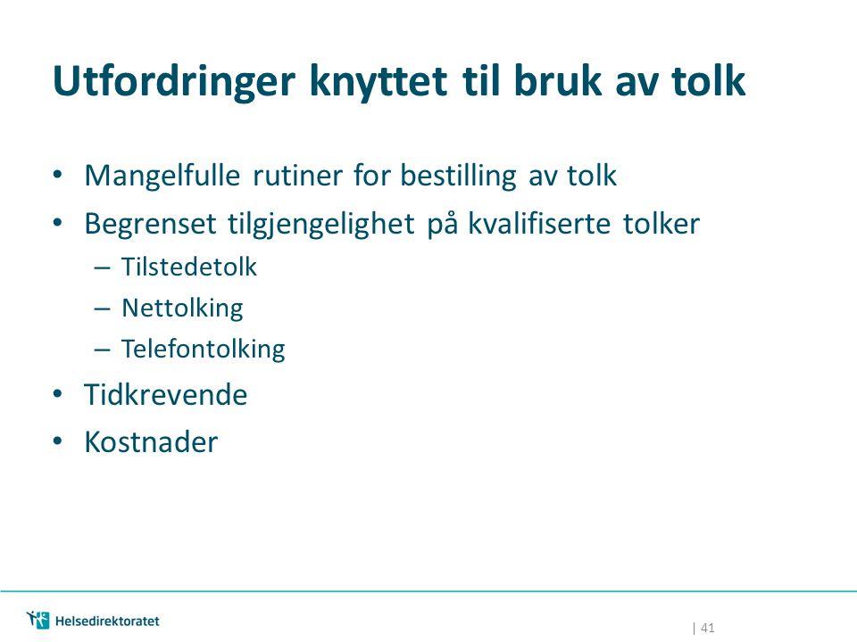 Utfordringer knyttet til bruk av tolk