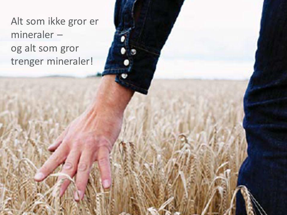 Alt som ikke gror er mineraler –
