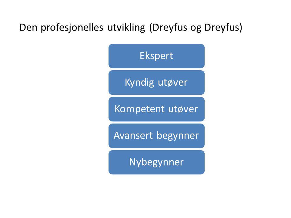 Den profesjonelles utvikling (Dreyfus og Dreyfus)