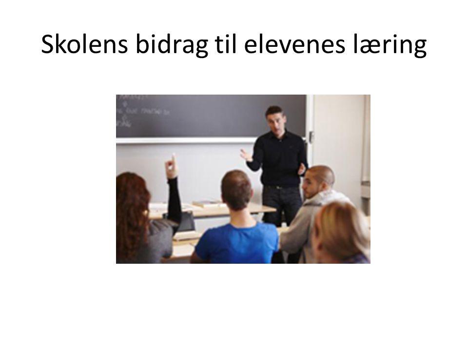 Skolens bidrag til elevenes læring