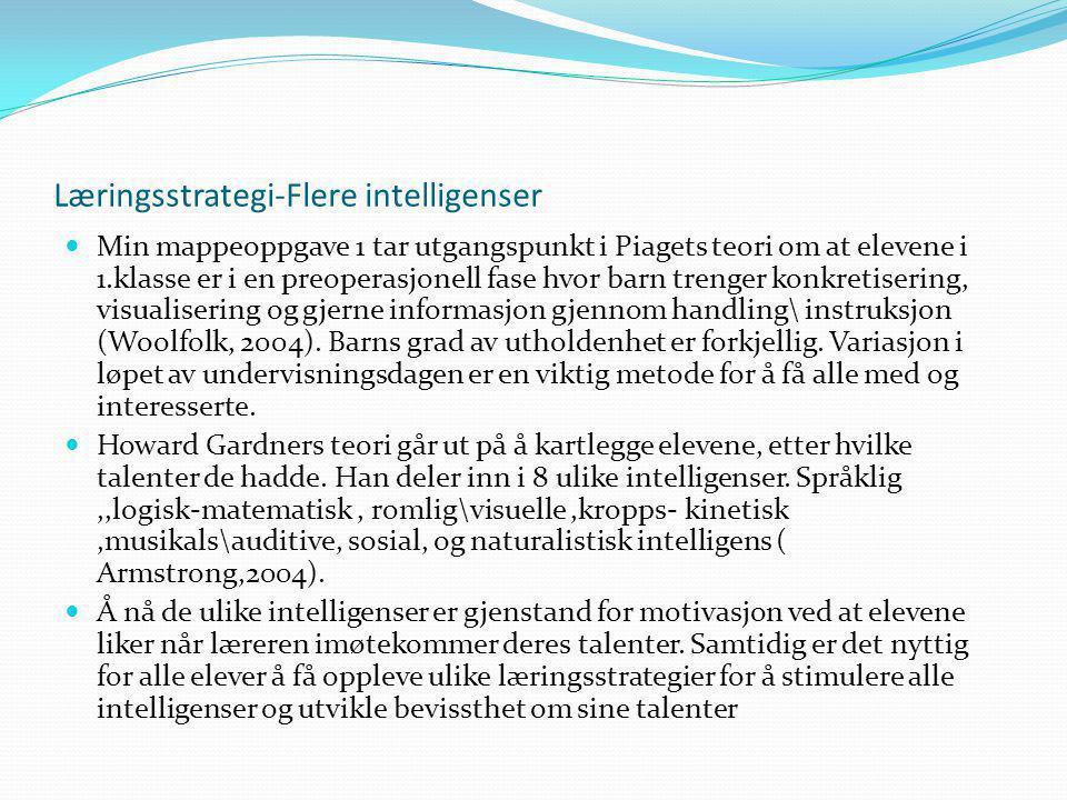 Læringsstrategi-Flere intelligenser