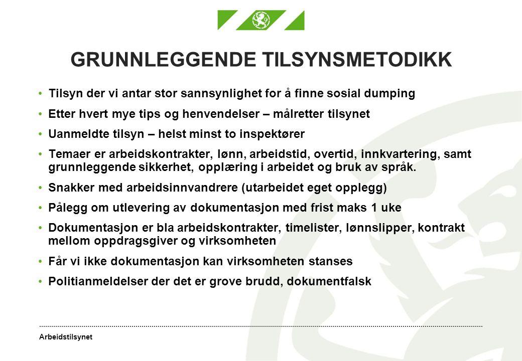 GRUNNLEGGENDE TILSYNSMETODIKK