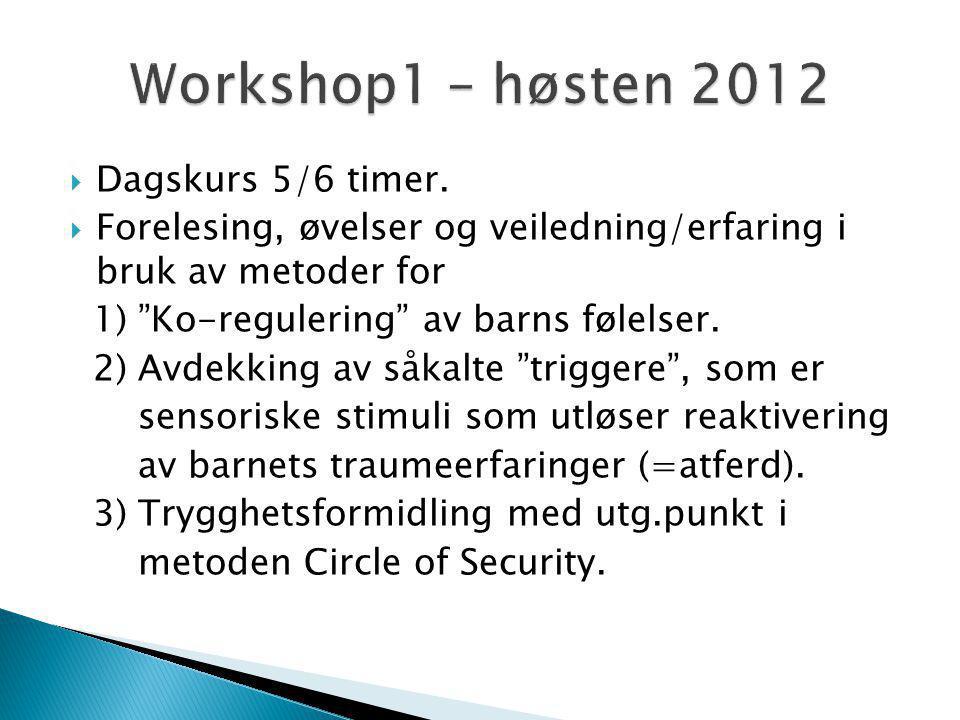 Workshop1 – høsten 2012 Dagskurs 5/6 timer.