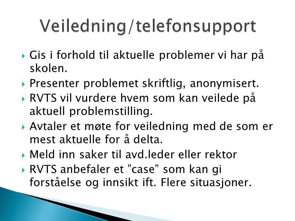 Veiledning/telefonsupport