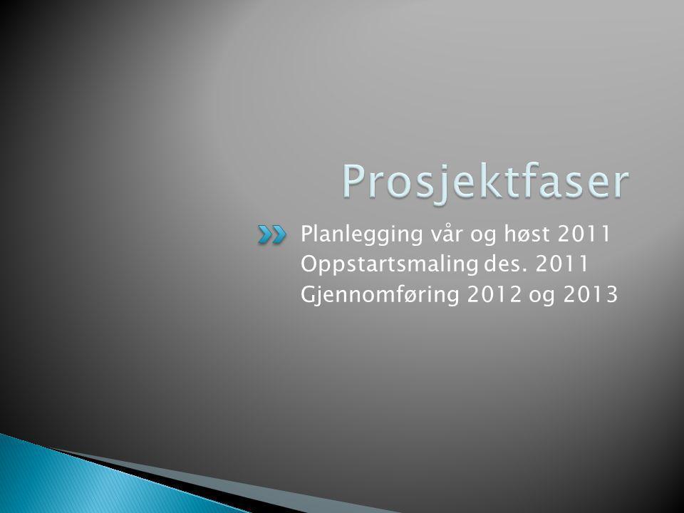 Prosjektfaser Planlegging vår og høst 2011 Oppstartsmaling des. 2011