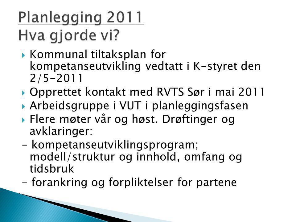Planlegging 2011 Hva gjorde vi