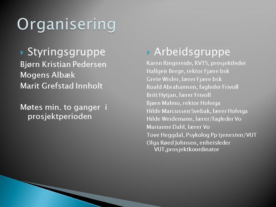Organisering Styringsgruppe Arbeidsgruppe Bjørn Kristian Pedersen