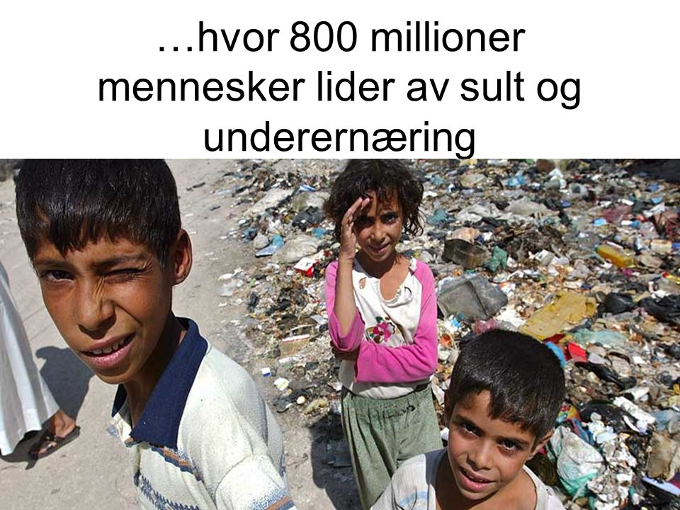…hvor 800 millioner mennesker lider av sult og underernæring