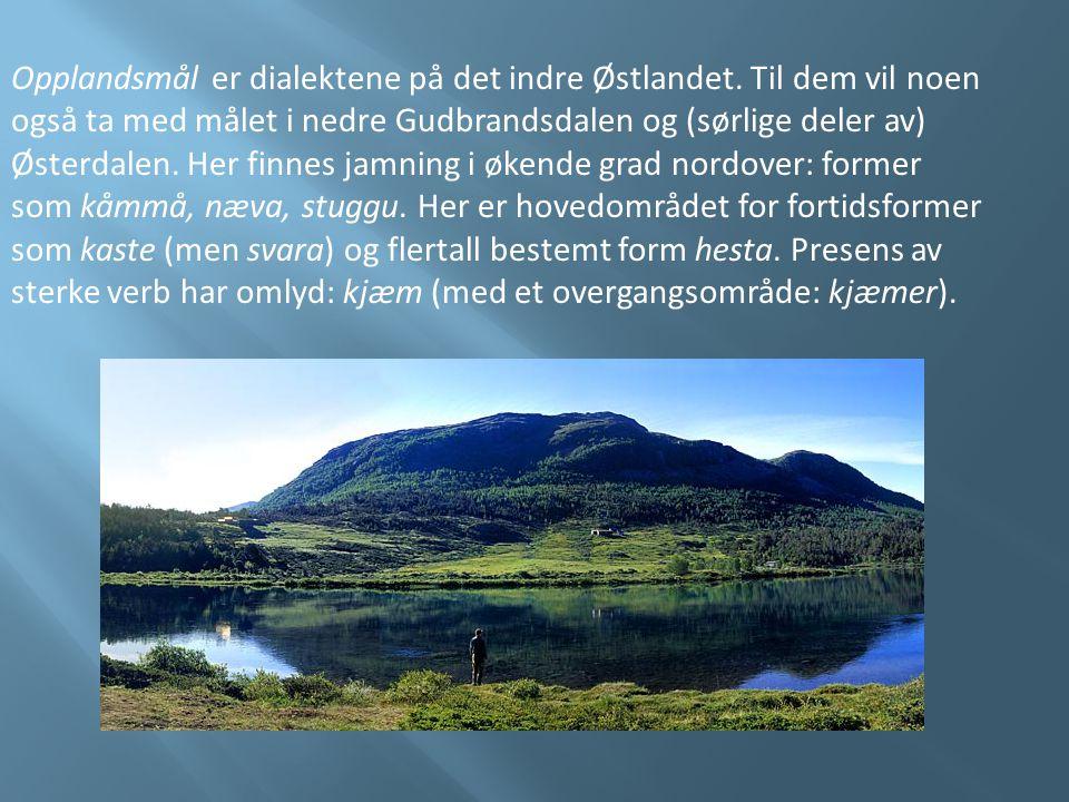 Opplandsmål er dialektene på det indre Østlandet