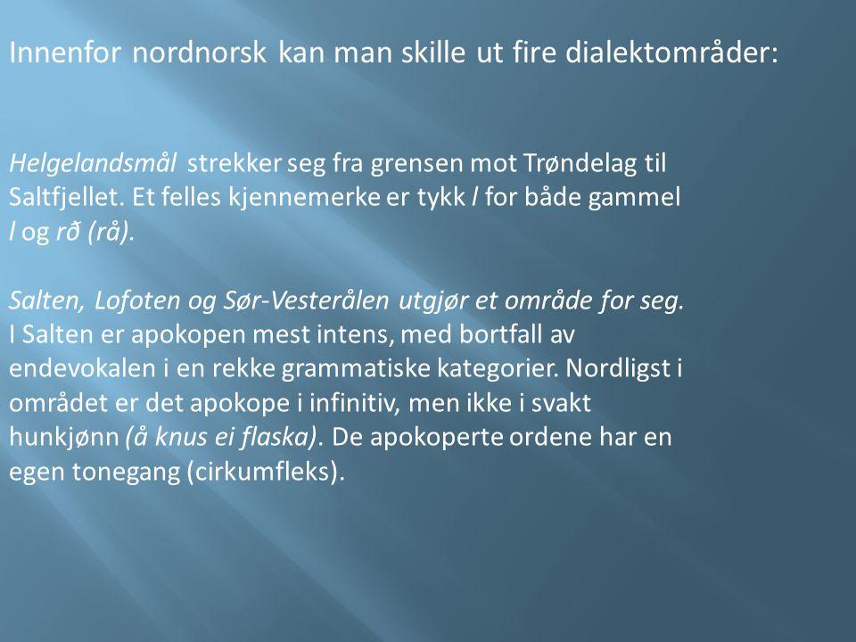 Innenfor nordnorsk kan man skille ut fire dialektområder: