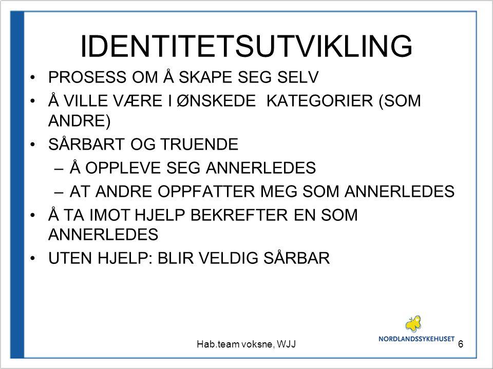 IDENTITETSUTVIKLING PROSESS OM Å SKAPE SEG SELV