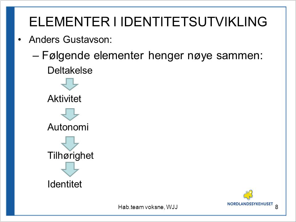 ELEMENTER I IDENTITETSUTVIKLING