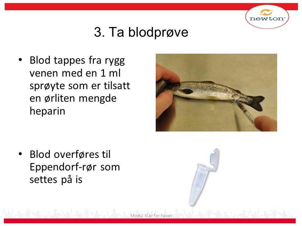 Eksamensforberedende i Akvakultur Samling 5 (2010)