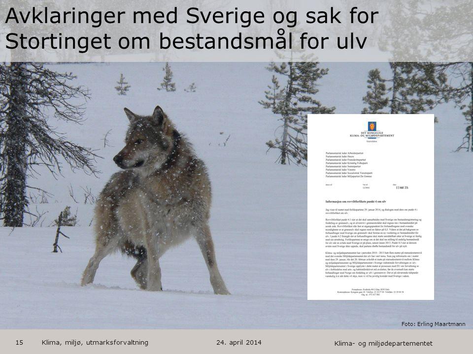 Avklaringer med Sverige og sak for Stortinget om bestandsmål for ulv