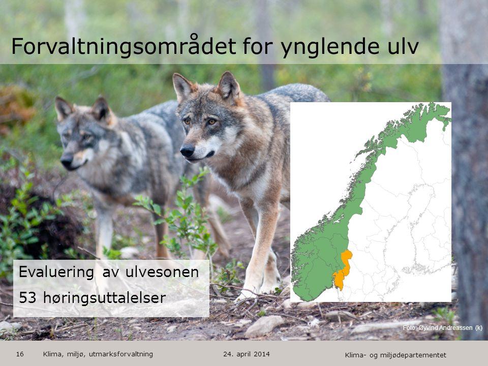 Forvaltningsområdet for ynglende ulv