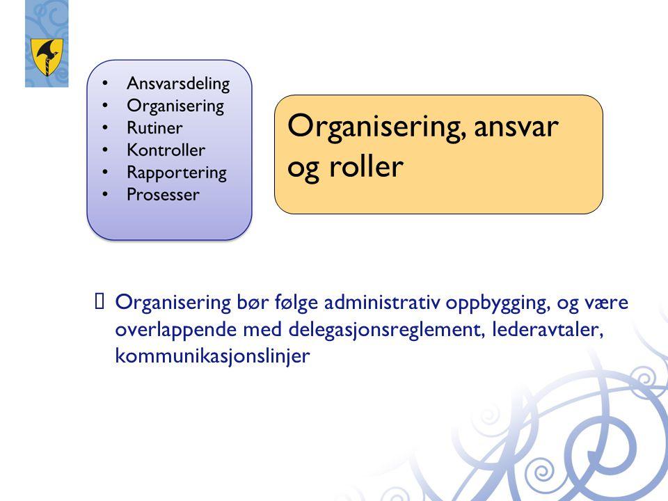 Organisering, ansvar og roller