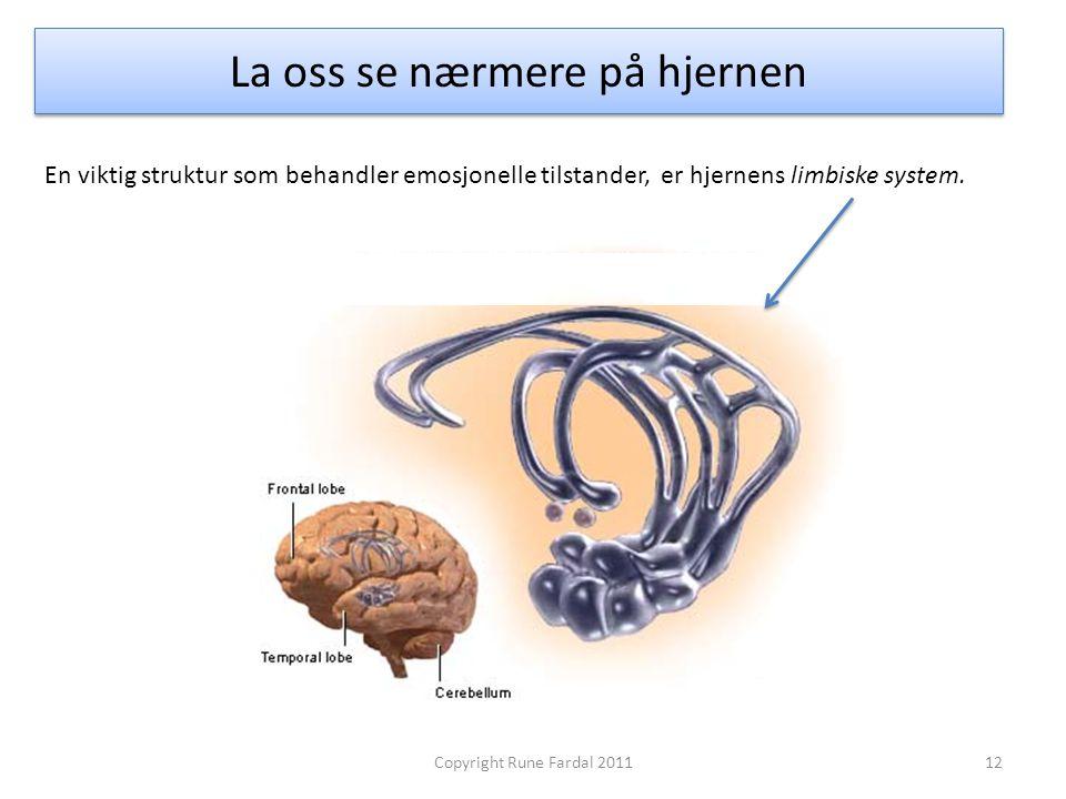 La oss se nærmere på hjernen