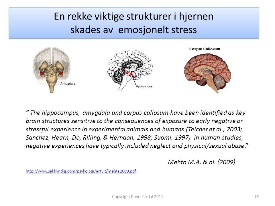 En rekke viktige strukturer i hjernen skades av emosjonelt stress
