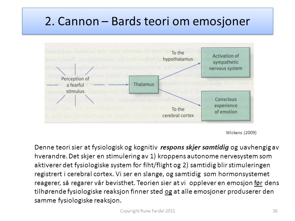 2. Cannon – Bards teori om emosjoner