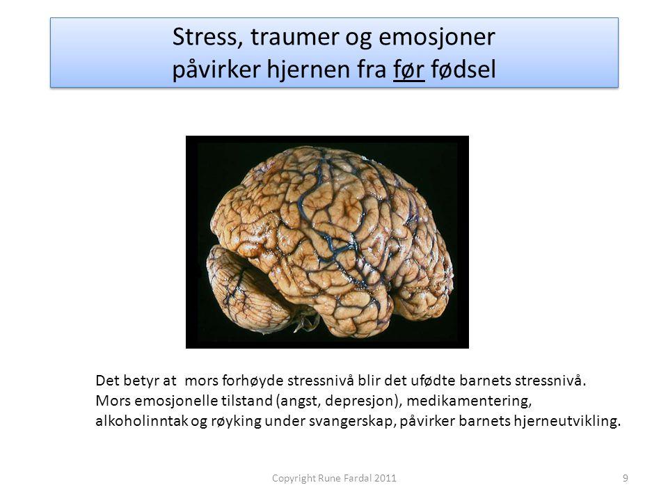Stress, traumer og emosjoner påvirker hjernen fra før fødsel