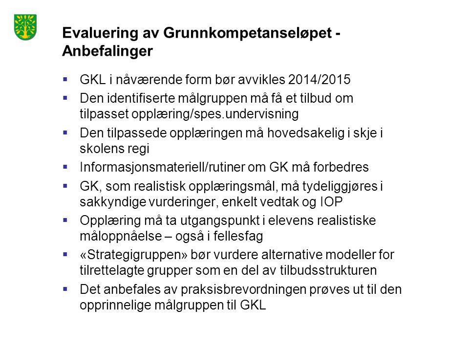 Evaluering av Grunnkompetanseløpet - Anbefalinger