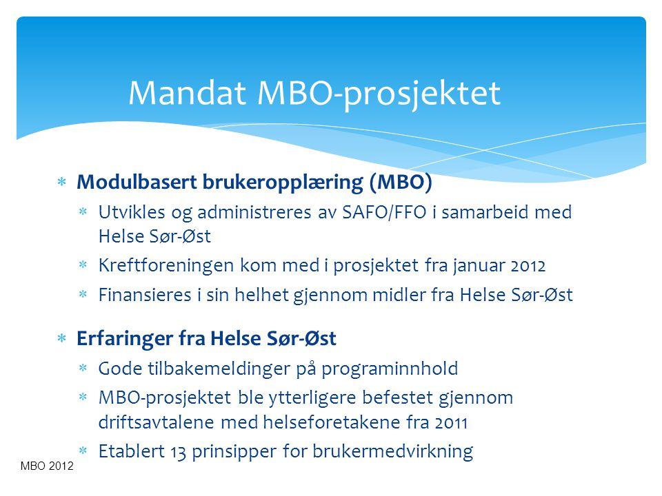 Mandat MBO-prosjektet